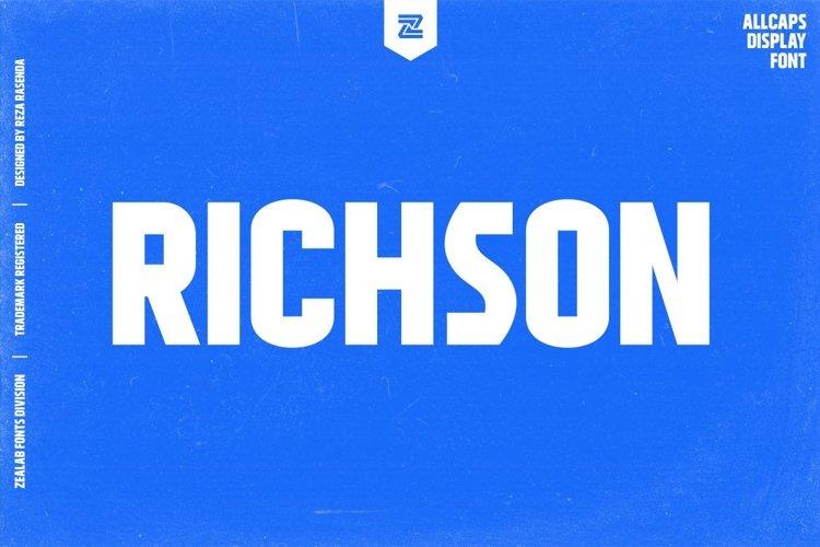 RICHSON - MULTIPURPOSE URBAN DISPLAY FONT example image 1