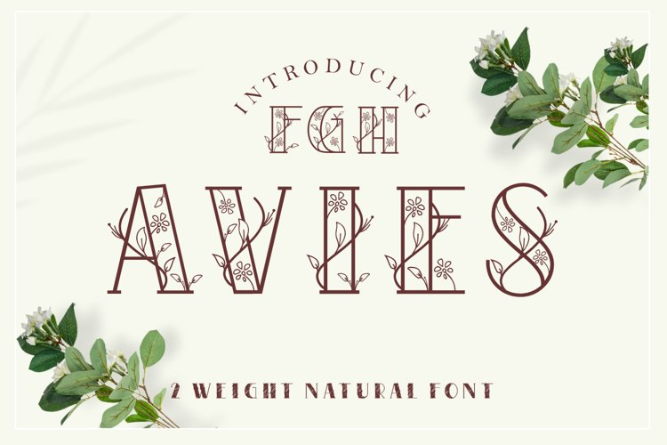 AVIES - 2 weight natural font example image 1