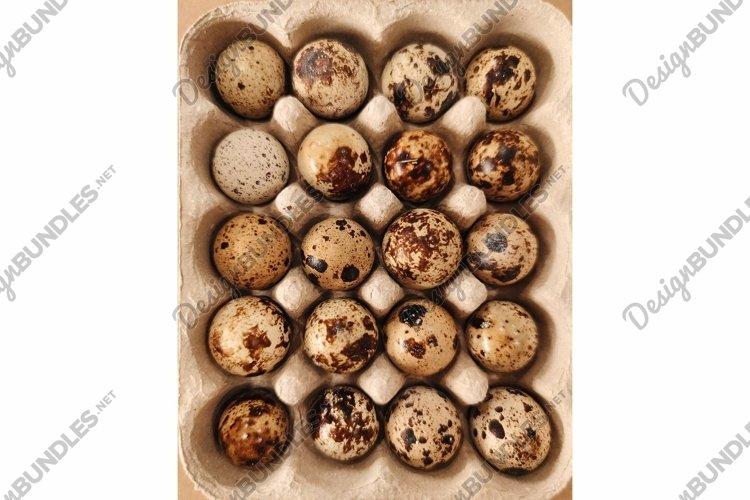 Quail eggs bird diet food craft background macro photo example image 1