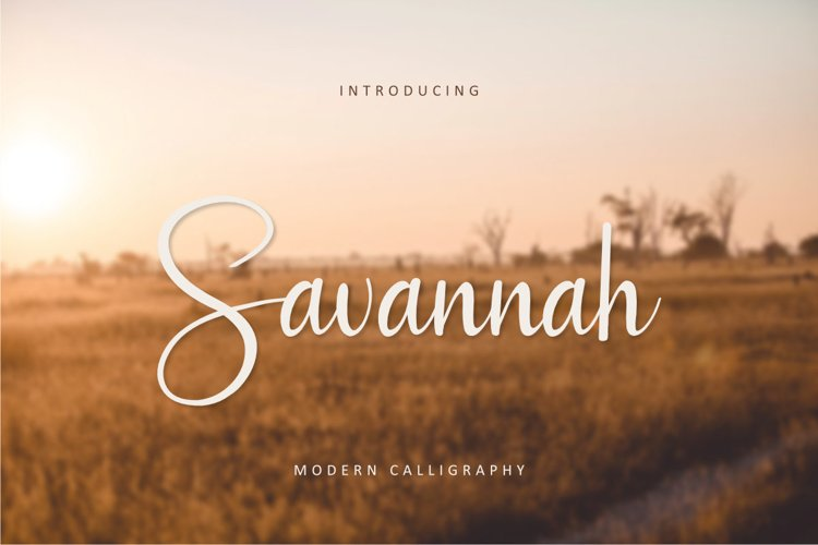 Savannah example image 1