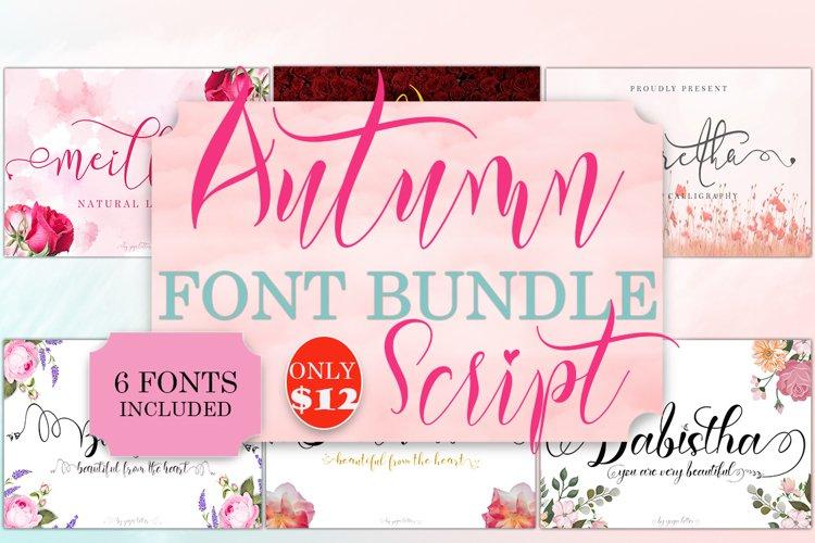 Autumn Script Font Bundle example image 1