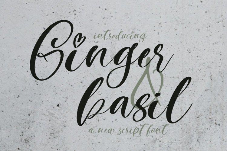 Web Font Ginger & Basil Script Font example image 1