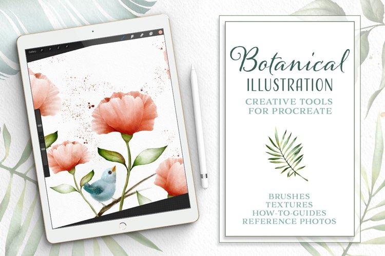 Botanical Illustration Toolkit for Procreate App