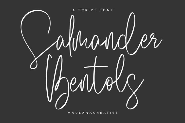Salmander Bentols Script Signature Typeface Font example image 1
