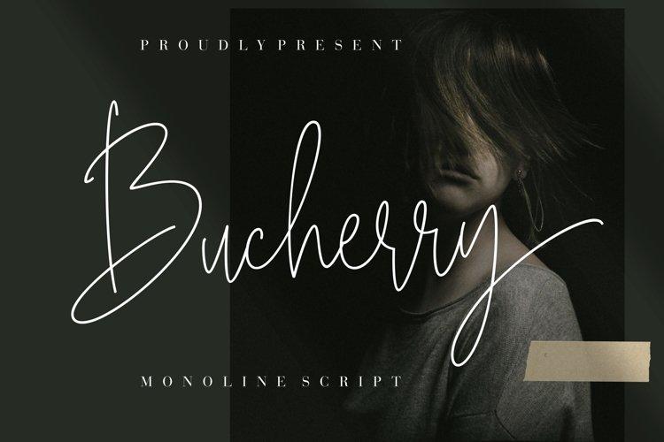 Bucherry Monoline Script example image 1
