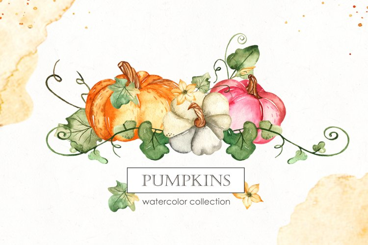 Watercolor Pumpkins. Clipart, cards, seamless patterns example image 1