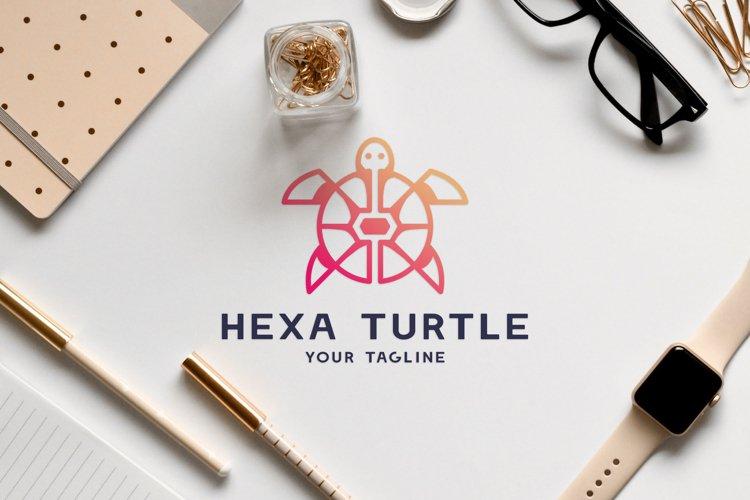 Animal vector logo design of hexagon and circle turtle
