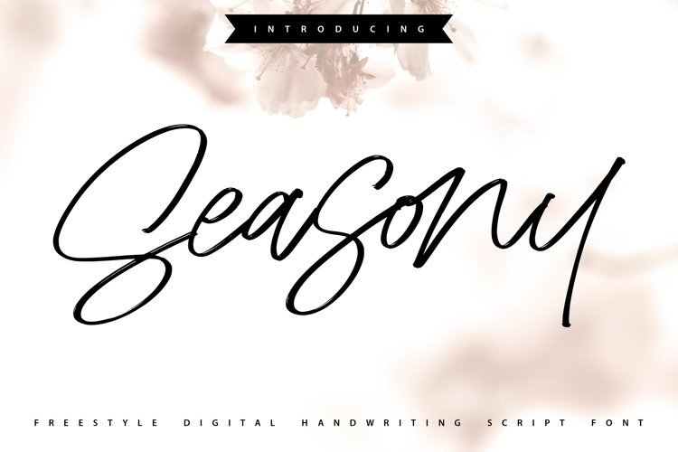 Seasony | Freestyle Handwriting Scipt Font example image 1