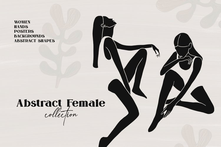 Feminine Collection example image 1