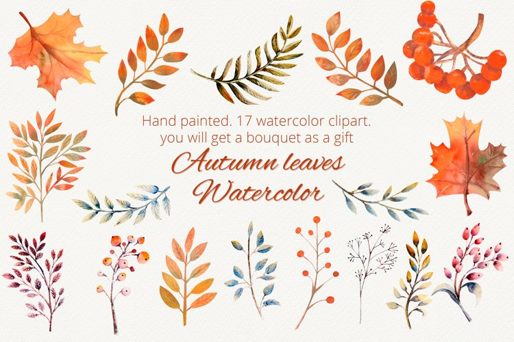 Autumn leaves. Watercolor clipart example image 1