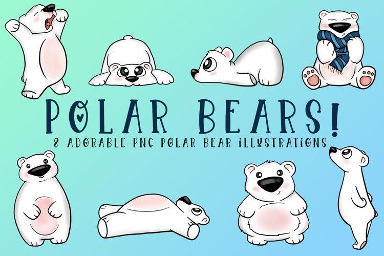 Polar Bear Illustrations| Polar Bear Clipart | PNG Bears