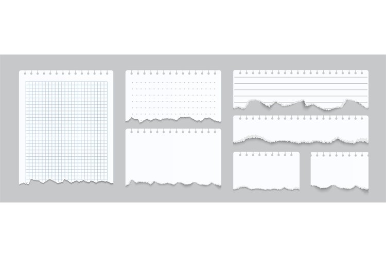 Torn notebook papers. Realistic blank gridded notebook rippe example image 1