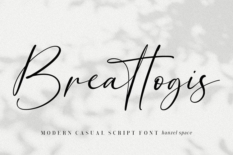 Breattogis // Modern Script Font example image 1