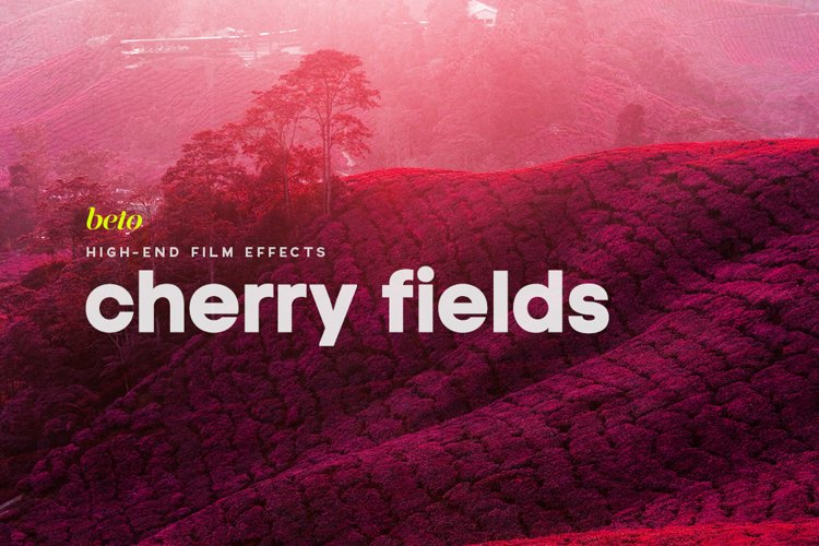 Cherry Fields Action example image 1