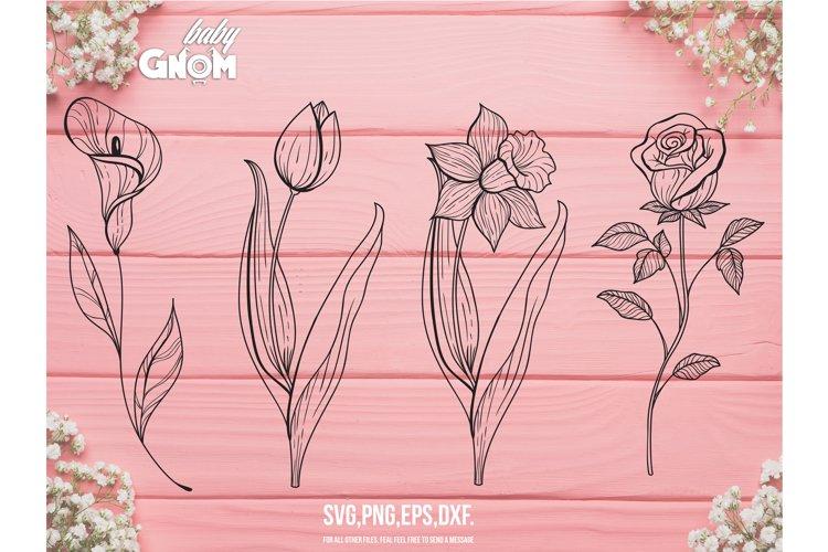 Single Flower SVG Bundle,Flower svg, Flowers svg , Exotic fl example image 1