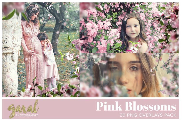 20 PINK BLOSSOMS Photoshop Overlays example image 1