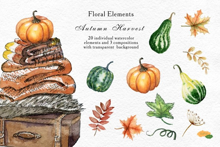 Watercolor Fall clipart Pumpkin, Autumn floral elements PNG example image 1