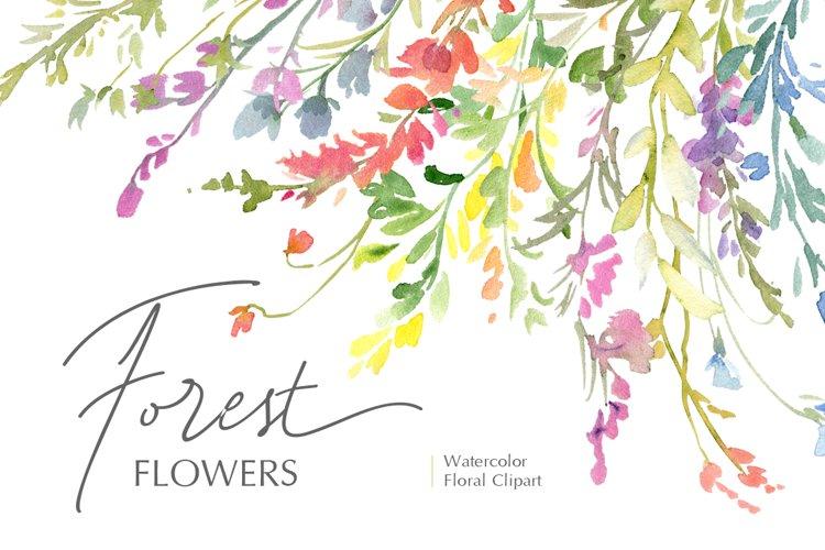 Watercolor Wildflowers Field Meadow Flowers PNG