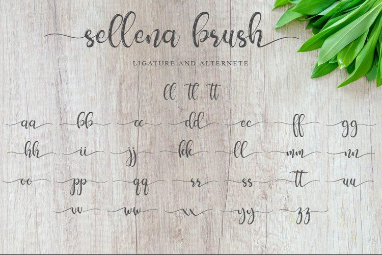 Sellena example 6