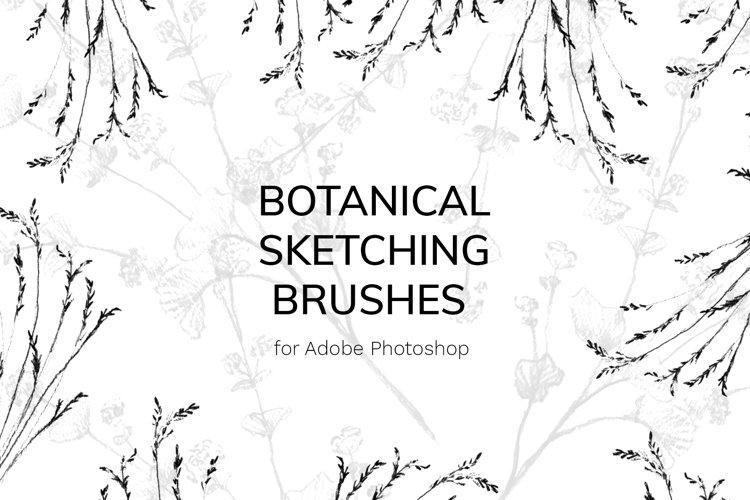 Botanical Brushes for Photoshop example image 1