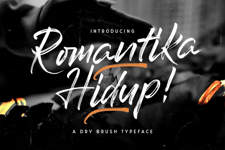 Romantika Hidup - Dry Brush Script Font example image 1