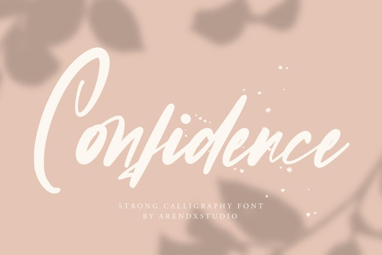 Confidence - Calligraphy Font example image 1