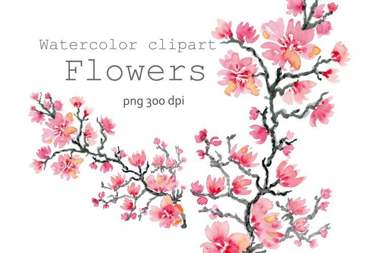Watercolor clipart flower Sakura.Blooming Tree,Cherry Pink