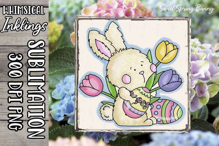 Sweet Spring Bunny Sublimation Clipart example image 1