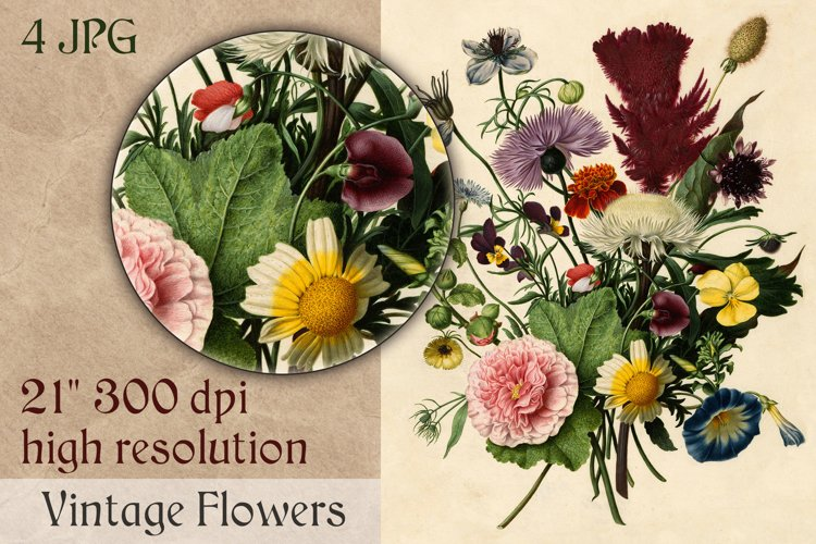 Vintage FLOWER bouquet clipart. Botanical retro illustration