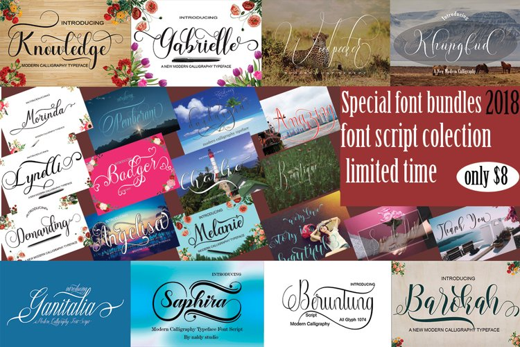 SPECIAL FONTS BUNDLES example image 1