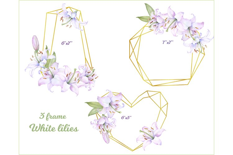 3 golden frame with flowers of white lilies Clipart PNG