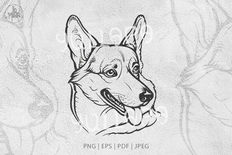 Corgi dog, Welsh corgi graphic illustration, vector and PNG example image 1