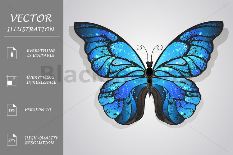 Blue Butterfly Morpho example image 1