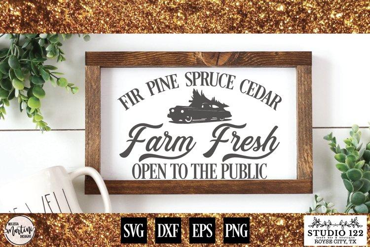 Fir Pine Spruce Cedar Farm Fresh Christmas Trees