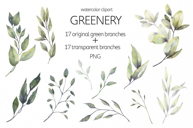 Watercolor Greenery Leaves Clipart