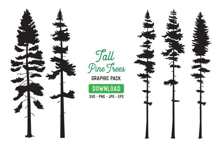Tall Pine Tree Vector Graphic Bundle