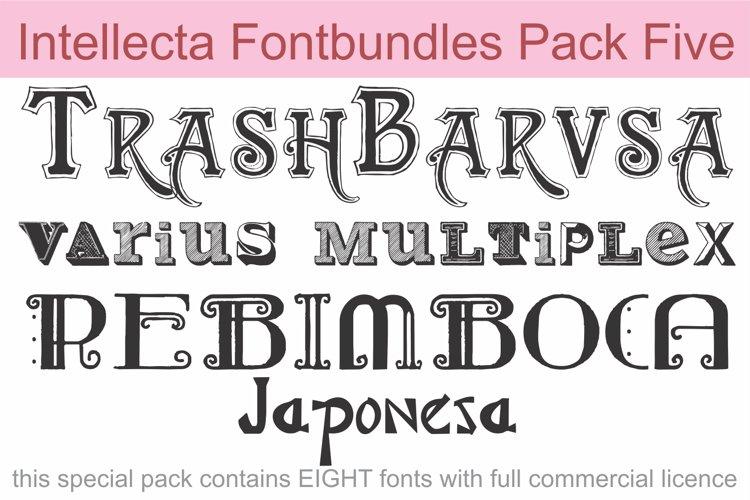 Intellecta Fontbundles Pack Five example image 1