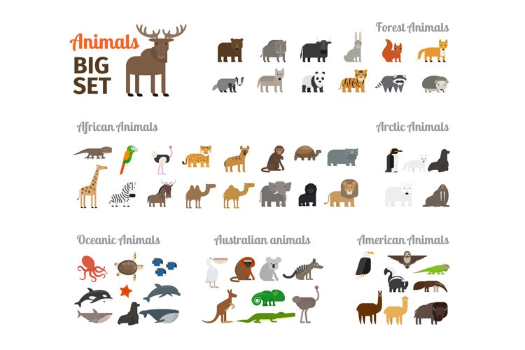 Animals in flat style example image 1