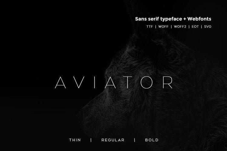 Aviator - Modern Typeface WebFont example image 1