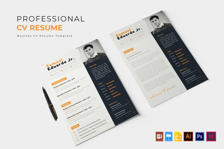 Professional Job | CV & Resume example image 1