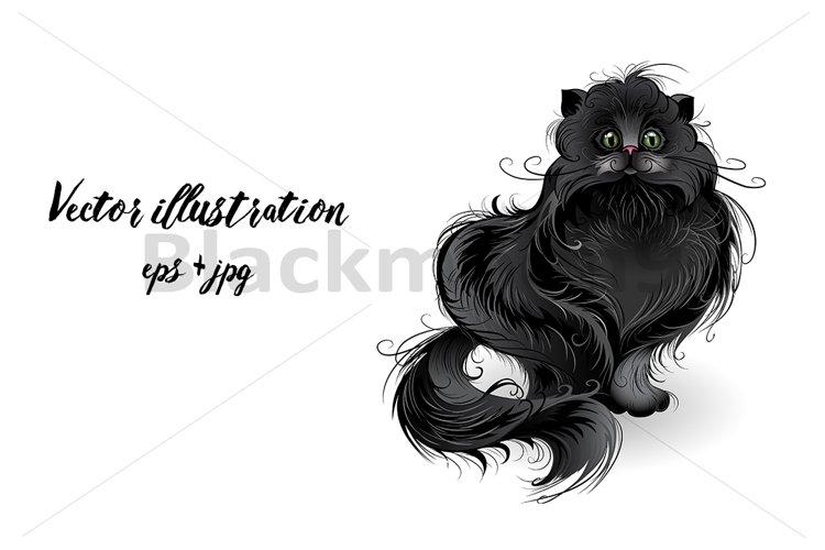 Fluffy black cat example image 1