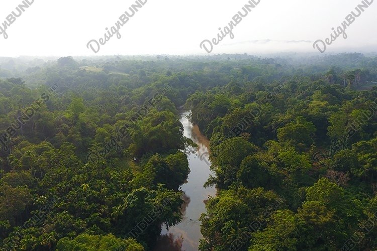 River flow in Indonesia's Aceh forest example image 1