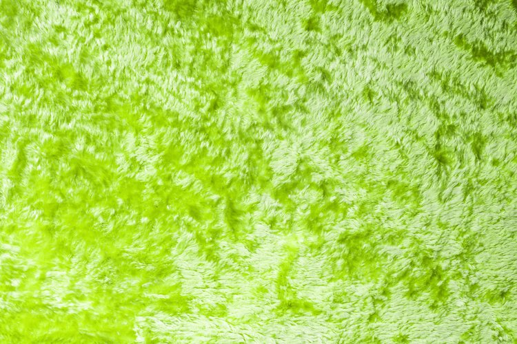 lime green wool carpet. Wool and fur texture