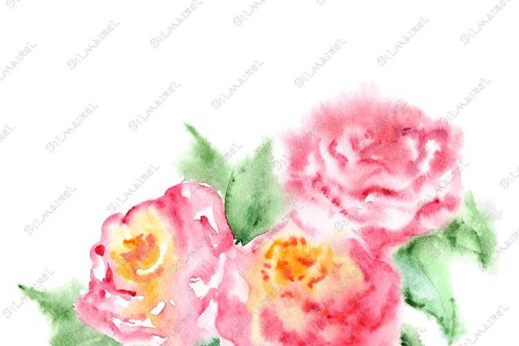 Watercolor pink tea rose flower floral composition isolated example image 1