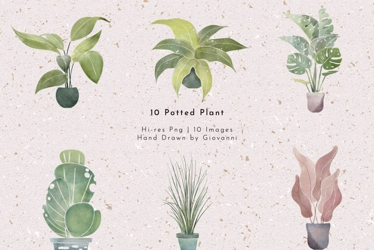 10 Potted Plant PNGs, Watercolor, Fine art,