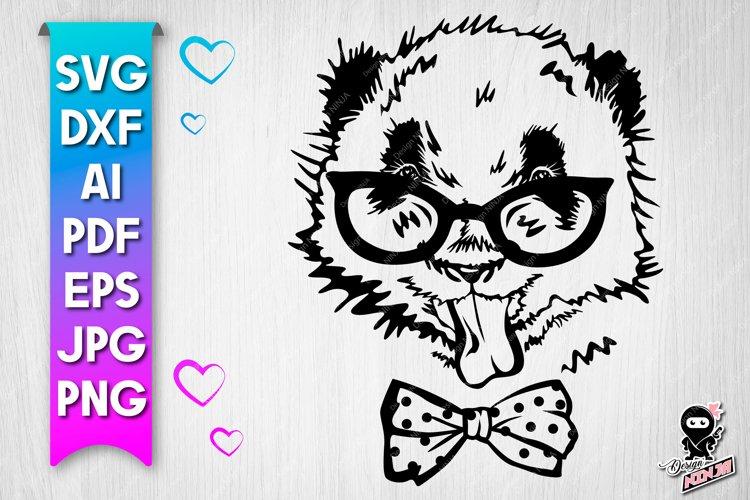 Panda cut file. Funny baby animal svg example image 1