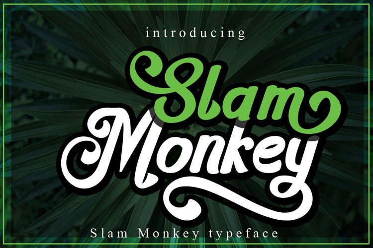 Slam Monkey example image 1