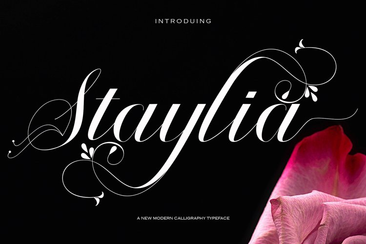 Staylia Script example image 1