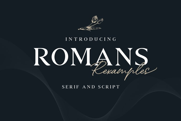 ROMANS Rexamples Font Duo example image 1