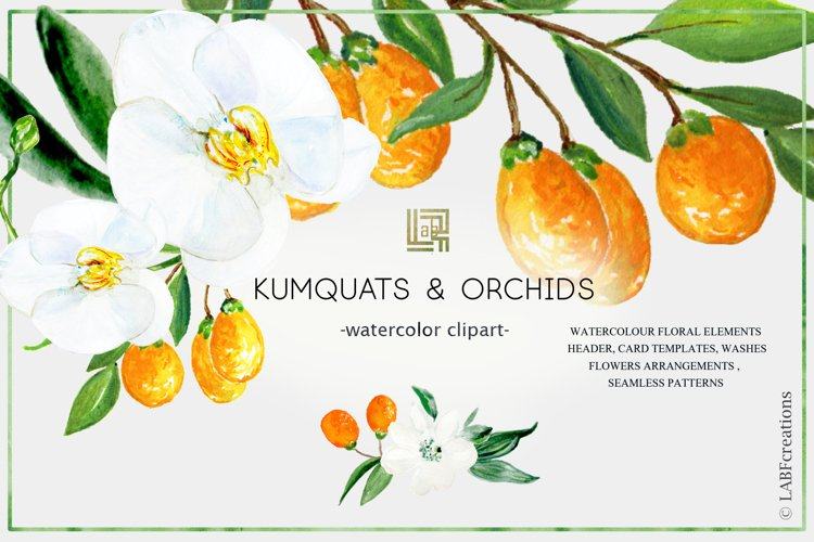 Kumquat & white orchids. Watercolors clipart collection. example image 1